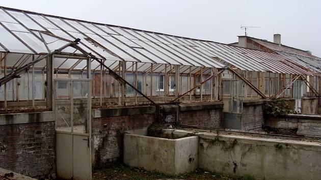 Oprava dvou skleníků v přerovském parku Michalov si vyžádá náklady ve výši 12 milionů korun.
