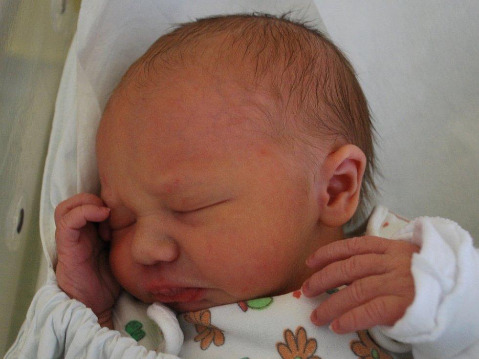 Tadeáš Olehla, Přerov, narozen dne 20. listopadu 2012 v Přerově, míra: 48 cm, váha: 2 800 g