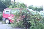 Hranickem se přehnala silná bouře. Padaly stromy, střechy. Hranicko zasáhl i výpadek elektrického proudu.
