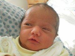 Sofie Danková, Kojetín, narozena dne 19. dubna 2013 v Přerově, míra: 46 cm, váha: 2520 g