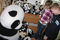 Hranický Dům dětí a mládeže zaplavila více než tisícovka plyšových medvídků
