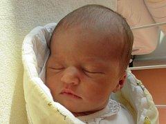 Lucie Macháňová, Hustopeče nad Bečvou, narozena dne 23. listopadu 2015 ve Valašském Meziříčí, míra: 48 cm, váha:  3300 g
