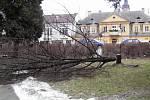 Neznámý vandal ze středy na čtvrtek pokácel v ulici Motošín v Hranicích lípu, která rostla před hlavním vstupem do bývalé zvláštní školy.