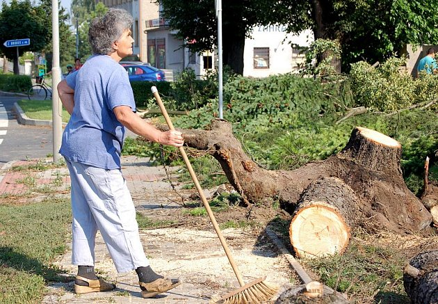 Plné ruce práce měli v úterý 14. července pozdě večer hasiči na Přerovsku. Kvůli silnému vichru vyjížděli k šesti zásahům. V obci Kokory se vzrostlý smrk zřítil na rozestavěný rodinný dům. Podle svědků zřejmě do stromu udeřil blesk.