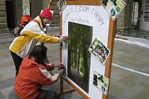 Fotografická výstava věnovaná vítězství skaličské aleje v anketě Strom roku 2011 se od soboty koná ve dvoraně hranického zámku.