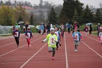 Atletika v Hranicích. Ilustrační foto
