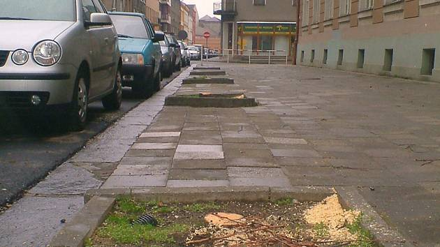 Vykácené stromořadí v Bartošově ulici v Přerově.