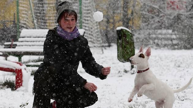 V kraji hustě sněží.