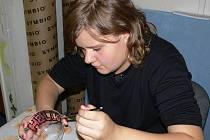 Dvanáctiletá Tereza v hranickém podprahovém klubu