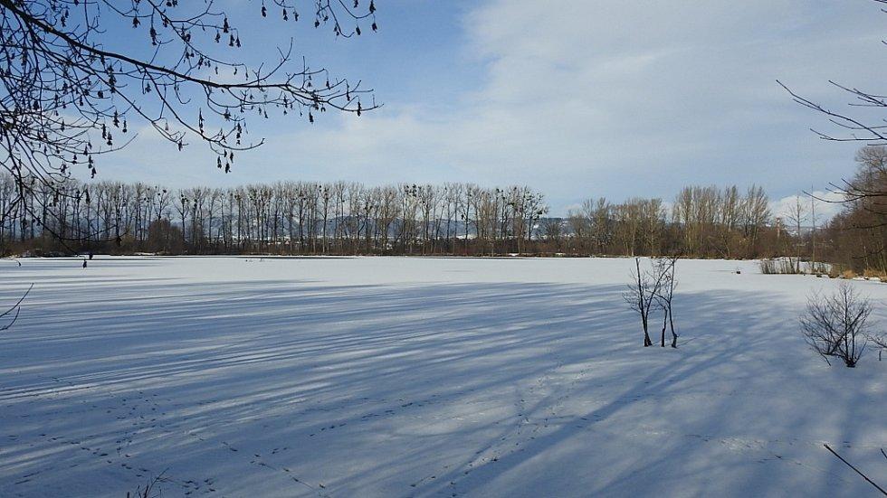 Zimní Hranice ve středu 20. ledna - zamrzlá Tofa.