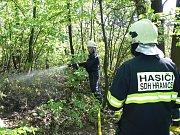 Koncem dubna zasahovali dobrovolní hasiči z Hranic u požáru lesa na okraji Hranic.