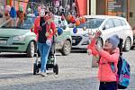 Kraslicovník na hranickém náměstí na sebe poutá pozornost kolemjdoucích.