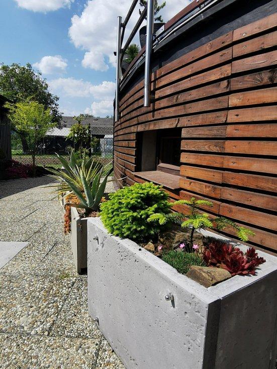 Život v betonu pod terasou.