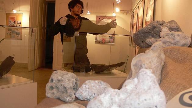 Už od čtvrtka bude k vidění ve výstavní síni Stará radnice v Hranicích expozice s názvem Zkamenělé stopy