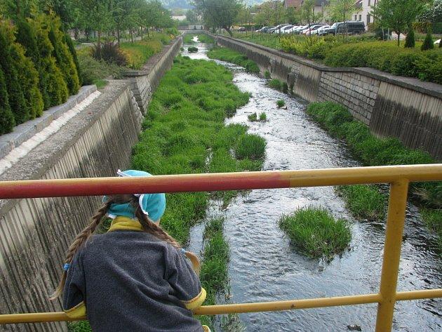 V korytě Veličky je více zeleně než vody.
