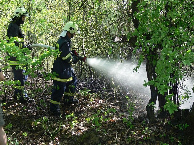 Hasiči zasahují při požáru lesa vosadě Šafranica