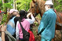 Školáci v lese ve Valšovicích. Ilustrační foto