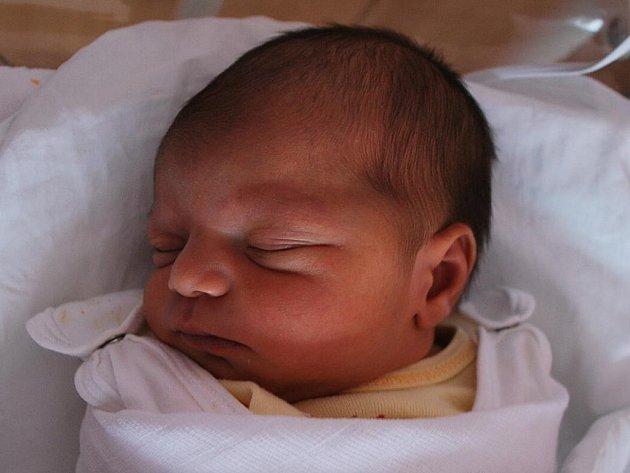 Kamilka Gogová, Kojetín, narozena 22. února 2012 v Přerově, míra 47 cm, váha 3 070 g
