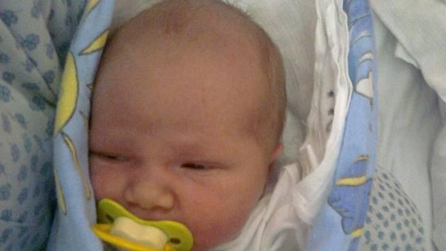 Davídek Panáček, Velká u Hranic, narozen 15.února 2012 ve Valašském Meziříčí, míra 50 cm, váha  3 850 g