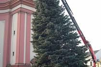 Vánoční strom.