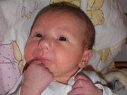 Kryštof Torač, Dřevohostice, narozen dne 7. listopadu 2016 v Přerově, míra: 50 cm, váha: 3644 g