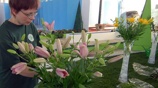 Práce na největší květinovou výstavu vrcholí.