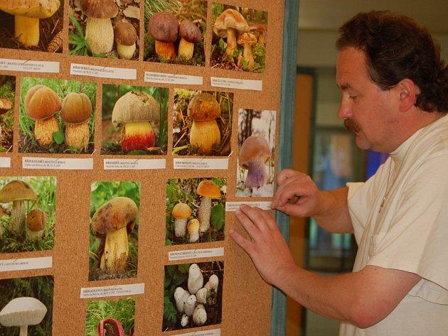 Výstava začala. S instalací výstavy začali včera členové Mykologického klubu v Přerově.