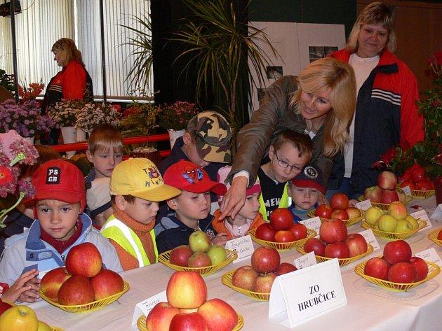 Výstava ovoce, zeleniny a rostlin přilákala  do prostějovského klubu Duha desítky návštěvníků.