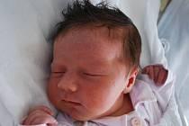 Anežka Peichlová, Osek nad Bečvou, narozena 29. února 2012 v Přerově, míra 51 cm, váha 4 230 g