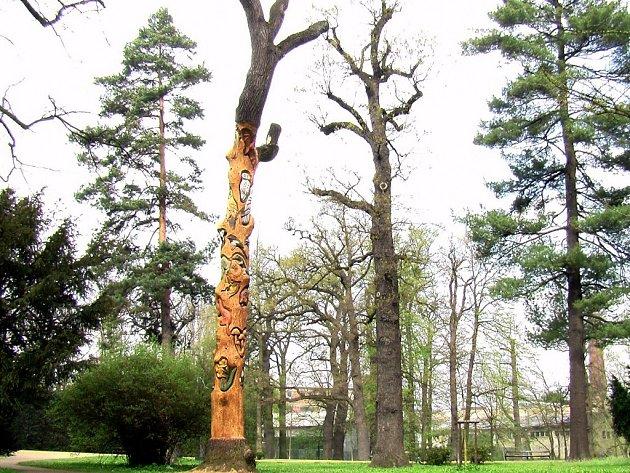 Stoletému dubu v přerovském parku Michalov vdechli mladí řezbáři nový život.