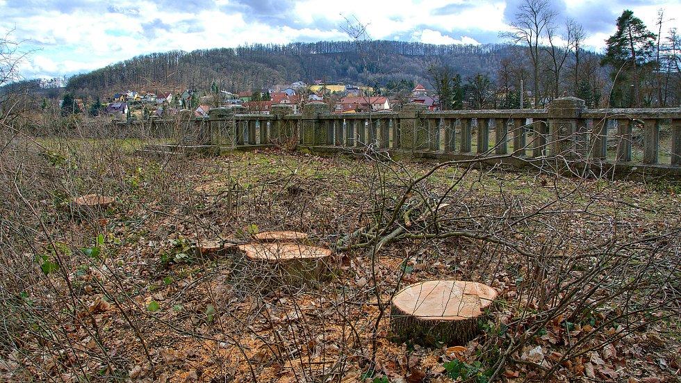 Kácení vzrostlých stromů v ulici Kropáčova a v parku v Hranicích, březen 2021.