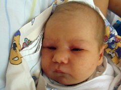 Eliška Číhalová, Ústí, narozena dne  6. prosince 2013 ve Valašském Meziříčí, míra: 49cm, váha: 3000 g