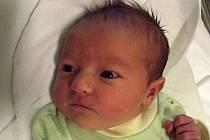 Beáta Klvaňová, Opatovice, narozena dne 12. října 2013 v Přerově, míra: 47 cm, váha: 3028 g