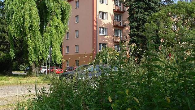 Na Struhlovsku v Hranicích dosahovala tráva až metrové výšky. Jejího posečení se lidé dočkali teprve koncem minulého týdne. Dnes už je sídliště zarostlé jen ve svých nejzazších koutech.