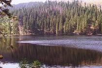 Půvabná šumavská krajina nabízí nespočet možností k nádherným výletům.