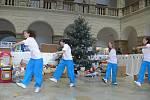 Hranice se opět zapsali do České knihy rekordů. Pod stromečkem ve dvoraně zámku se sešlo celkem 5255 dárečků.