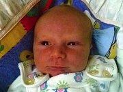 Andrej Fiebich, Přerov, narozený dne 17. září 2016 v Přerově, míra: 51 cm, váha: 3382 g