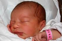 Viktorie Štětková, Týn nad Bečvou, narozena dne 19. listopadu 2013  v Přerově, míra: 48 cm, váha 3126 g