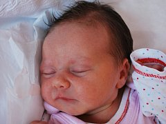 Sašenka Čechová, Hranice, narozena 24. dubna 2012 ve Přerově, míra 49 cm, váha 2 590 g