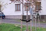 V Dřevohosticích v těchto dnech vrcholí přípravy na slavnostní vysázení nových stromů na místě vykácené aleje u zdejšího zámku. Kastelán Jiří Kasperlik pomáhá zhotovit stříšku na zbytku kmene stromu, který zbyl jako jediný z původní sto let staré aleje.