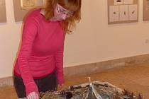 Veškeré obrazy a díla jsou prací žáků druhého stupně celkem pěti základních škol z Hranic, Drahotuš a Potštátu.