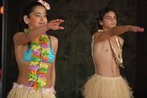 Děti z hranického dětského domova zaujaly porotu soutěže Nejmilejší koncert 2009 havajským tancem. V oblastním kole v Přerově jim ve středu vynesl postup do kola celostátního.