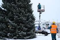 Odstrojování vánočního stromu v Hranicích