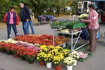 Přerovská květinářství zaplnili zákazníci. Nejčastěji kupují chryzantémy, ale také hřbitovní svíčky.