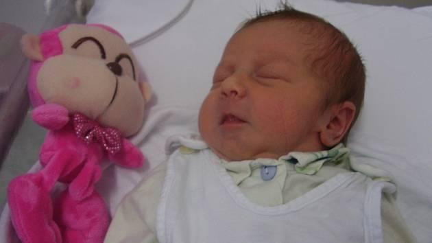 Leontýnka Formanová, Drahanovice, narozena 9. října v Přerově, míra 48 cm, váha 2980 g