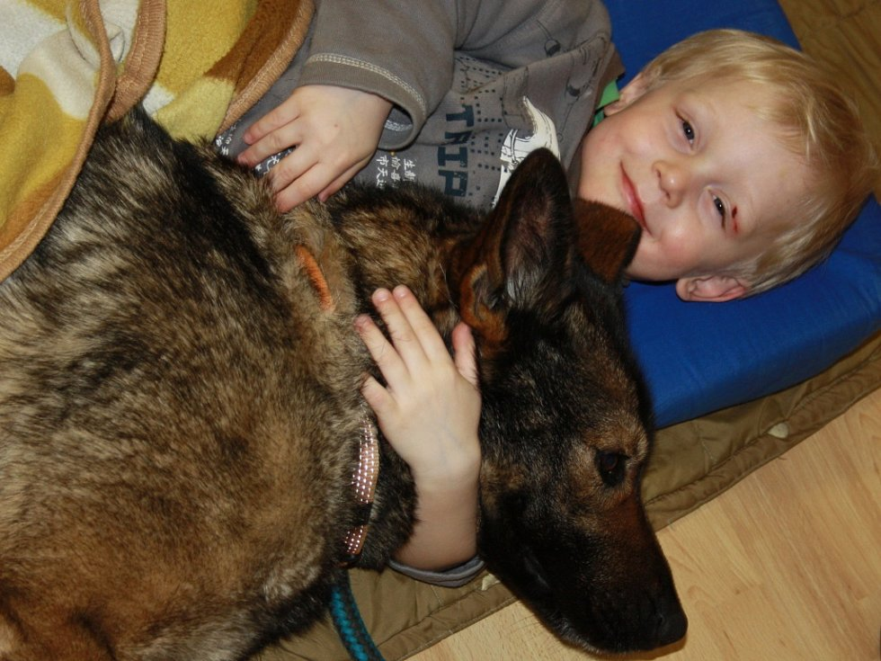 Canisterapie v Dětském centru v Hranicích