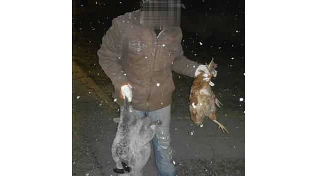 Policisté našli králíky a slepici v bundě zloděje. FOTO: