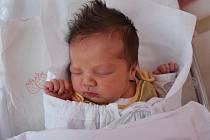 Anežka Matějíčková, Přerov, narozena 9. září 2010 v Přerově, míra 50 cm, váha 3 340 g