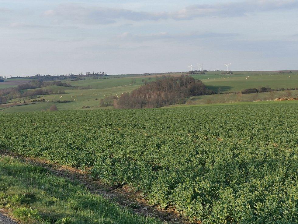 Pastevecký kraj