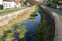 Pracovníci Povodí Moravy v říjnu posekli travní porost ve Veličce